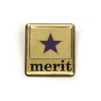 Plastic Merit Badge, SCH038 | Club & School Badges